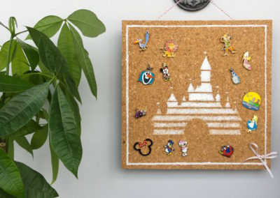 Collector's Pin Board